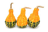 Three pear-shaped orange and green ornamental gourds