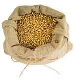 a bag of barley