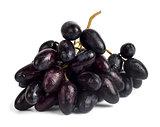 a bunch of fresh wet blue grapes