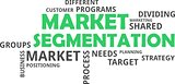 word cloud - market segmentation