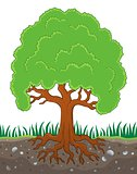 Tree with roots theme image 3