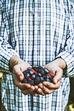 Farmer with blackberries