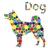 Dog filled with colored circles