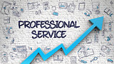 Professional Service Drawn on White Brickwall.