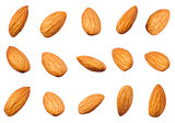 Raw almonds nuts different shape isolated on white