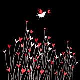 Loving bird on a dark background