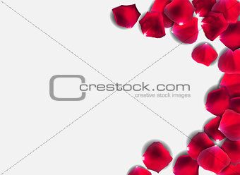 Abstract Natural Rose Petals o Background Realistic Vector Illustration