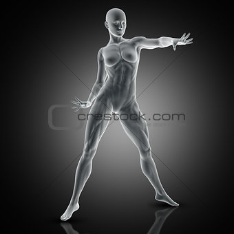 3D muscular female in standing pose