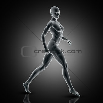 3D muscular female in walking pose
