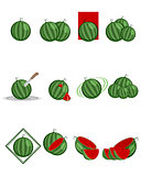 Twelve variants of watermelon