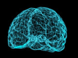X-ray image of human brain