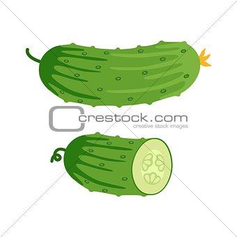 Cucumber and half of cucumber. Vector illustration.