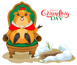 Happy groundhog day greeting card. Marmot king sitting on throne chair