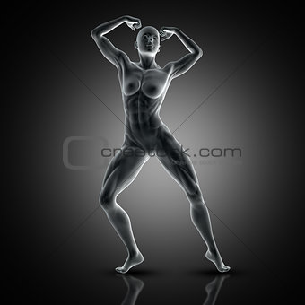 3D muscular female in muscle pose