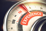 Experience - Text on Conceptual Gauge with Red Needle. 3D.