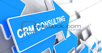 CRM Consulting - Text on the Blue Pointer. 3D.