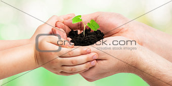 Father gives a little sprout to the baby, ecology concept