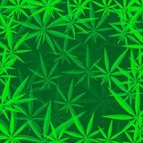 Green Cannabis Leaves Background