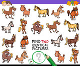 find two identical horses educational activity