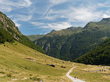 Orlu natural reserve, Pyrenees, France