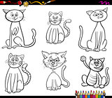 funny cats characters coloring book