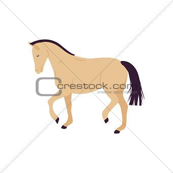 Cartoon horse vector illustration. Flat style pony.