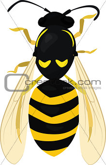 Sketch of Wasp. Wasp isolated on white. Bee