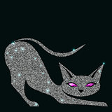 Silver cat with violet eyes