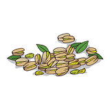 Isolated clipart Pistachio