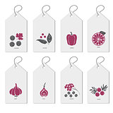 Template a set of bags with spices. Hand drawn