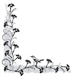 flourishes frame with bird