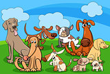 dog characters group cartoon illustration