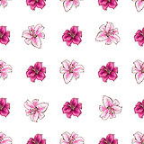Seamless pattern with pink lilies flower on white background. Vector set of blooming floral for wedding invitations and greeting card design.