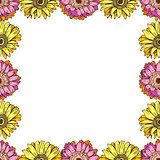 Seamless pattern with daisies flower on white background. Vector set of blooming floral for wedding invitations and greeting card design. Can be used as a flower frame.