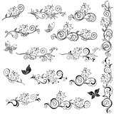 Set of ornate floral design elements