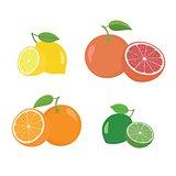Fresh citrus fruits whole and halves 4 icons square with orange grapefruit lemon lyme