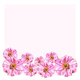 Handpainted watercolor flowers set in vintage style. Anemones on pink blank can be used for birthday card, invitation, wedding card, poster, mothers day card