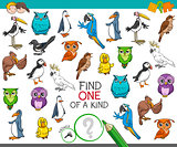 find one of a kind with birds animal characters