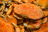 Boiled crabs background