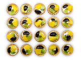 Delicious mini fruit tart with peach, grape & kiwi, line up and
