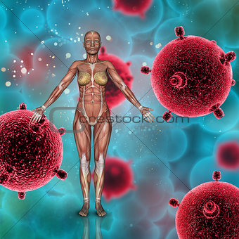 3D female medical figure with muscle map on a virus cells backgr