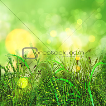 3D green grass and wheat on a bokeh lights background