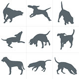 Vector dogs silhouettes