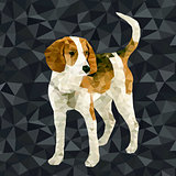 Vector polygonal dogs silhouettes