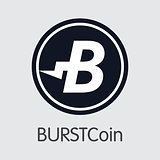 Burstcoin Digital Currency Coin. Vector Element of BURST.