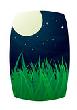 Full moon and starry night sky with grass