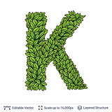 Letter K symbol of green leaves.