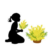 Silhouette girl holds mimosa. Mothers day