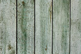 Vintage mint green old wooden planks wall background. Retro style filtered photo