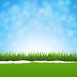 Green Grass And Ripped Paper Nature Background
